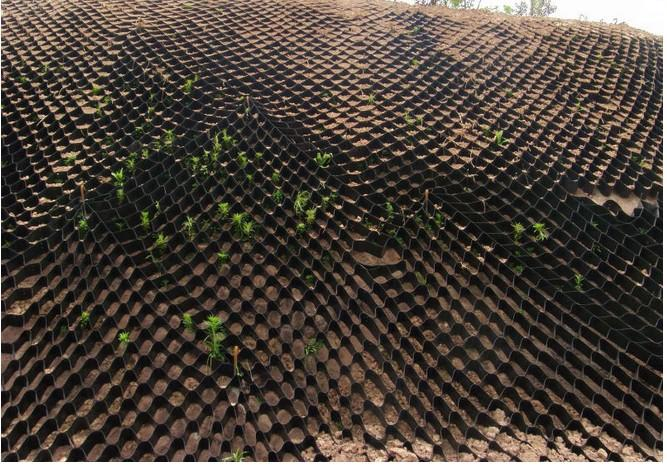 Geotextil Geogrid Geocell For Ground And Slope
